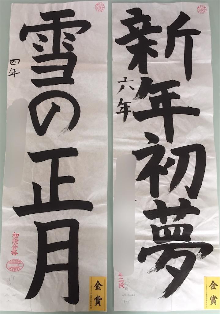 f:id:fujioi515:20190124115704j:image