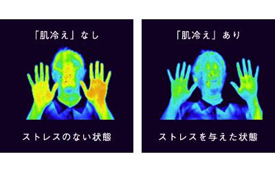 f:id:fujisan606:20180919113033j:plain