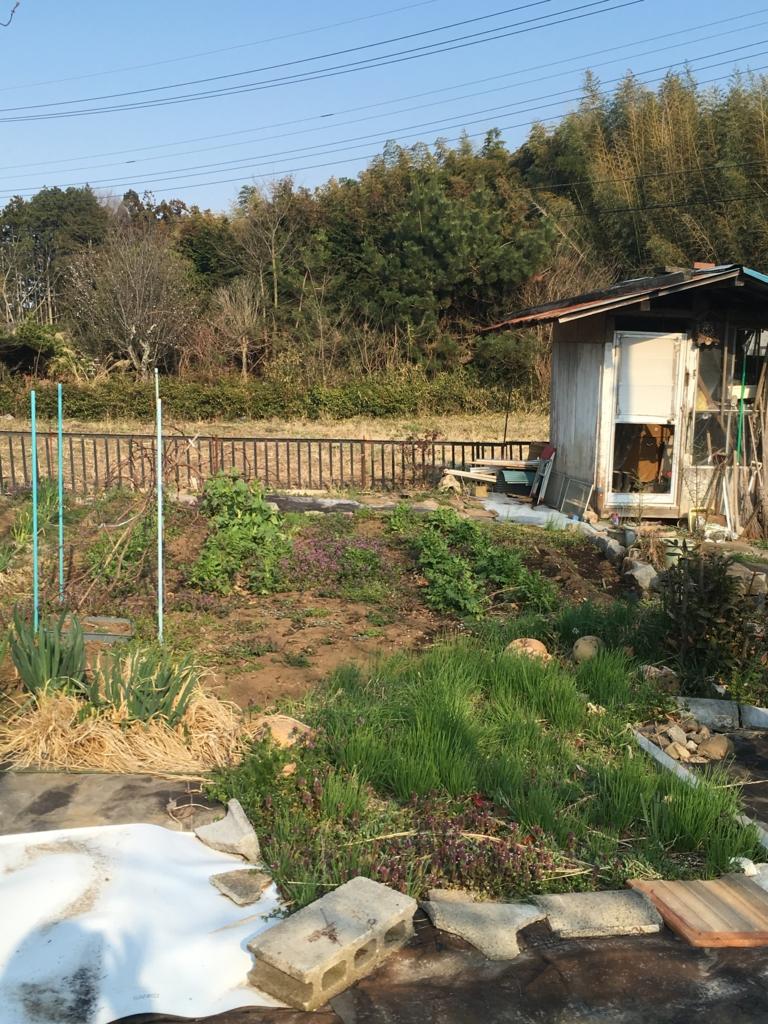 f:id:fujisanO:20170413174418j:plain