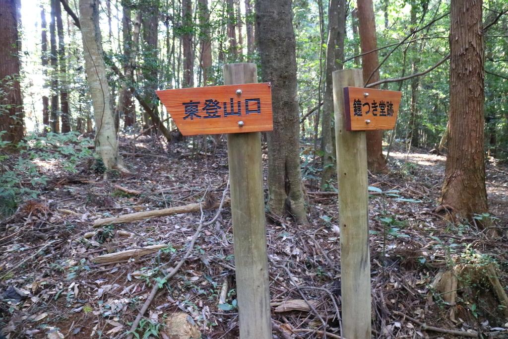 f:id:fujisanO:20190130152957j:plain