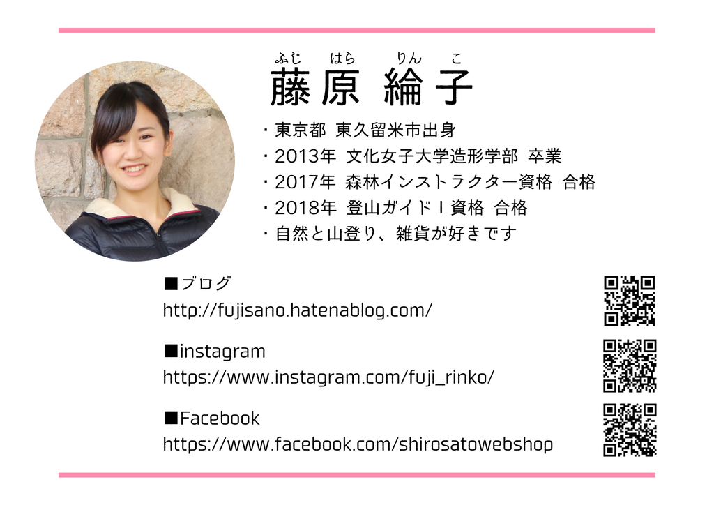 f:id:fujisanO:20190131113128j:plain