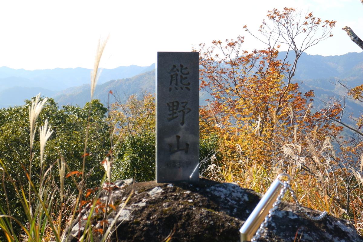f:id:fujisanO:20191115153008j:plain