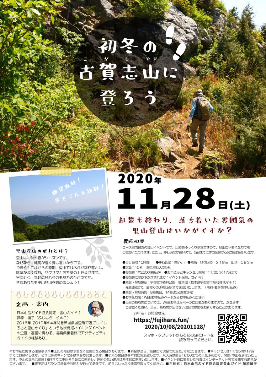 f:id:fujisanO:20201009211710j:plain