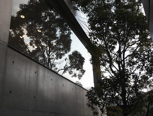f:id:fujisawa-zuan:20080114021028j:image