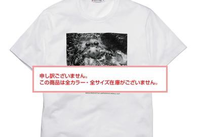 f:id:fujisawa-zuan:20081105232145j:image