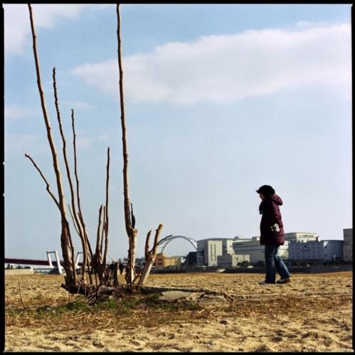 f:id:fujisawa-zuan:20090124022426j:image:w400