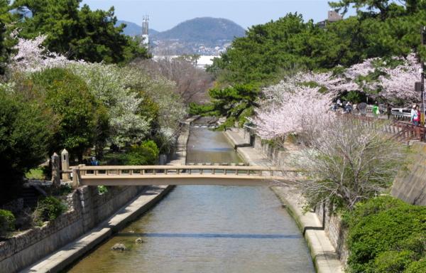 f:id:fujisawa-zuan:20120412171120j:image:w400