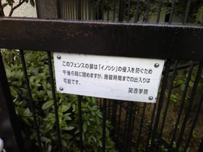 f:id:fujisawamasashi:20120324171138j:image