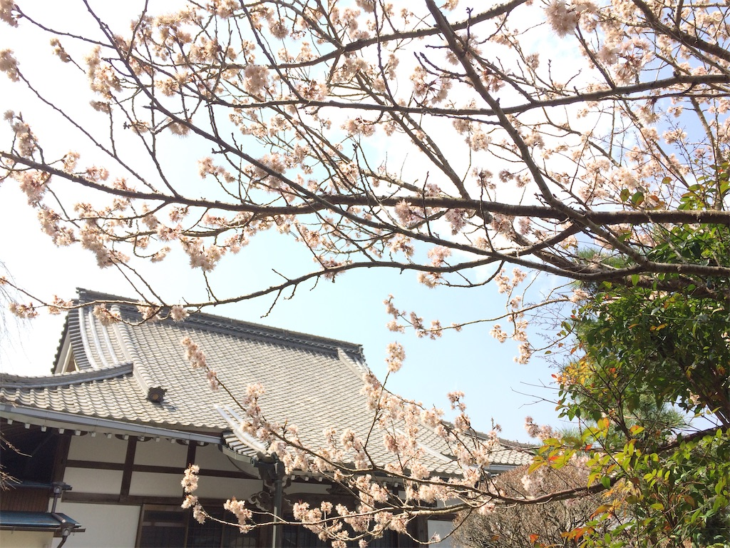 f:id:fujishika:20210221002130j:image