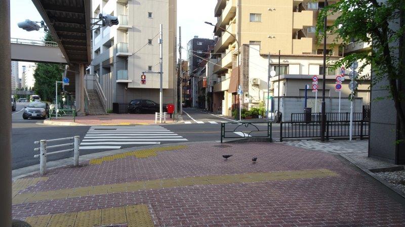 f:id:fujisyuu01:20191002064044j:plain