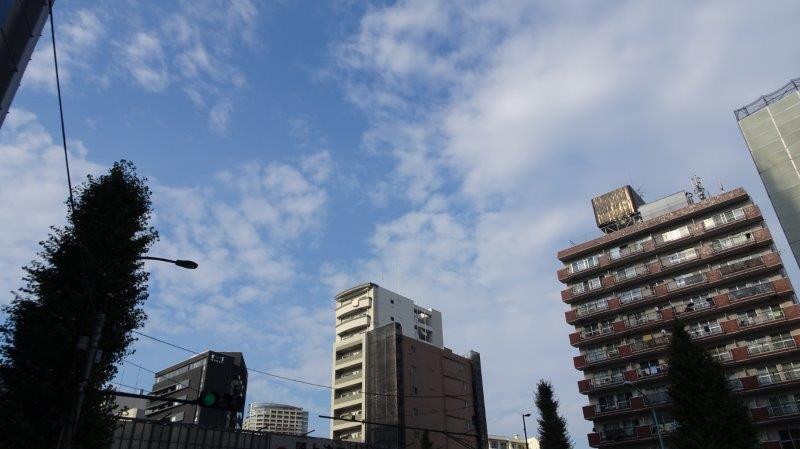 f:id:fujisyuu01:20191005081811j:plain