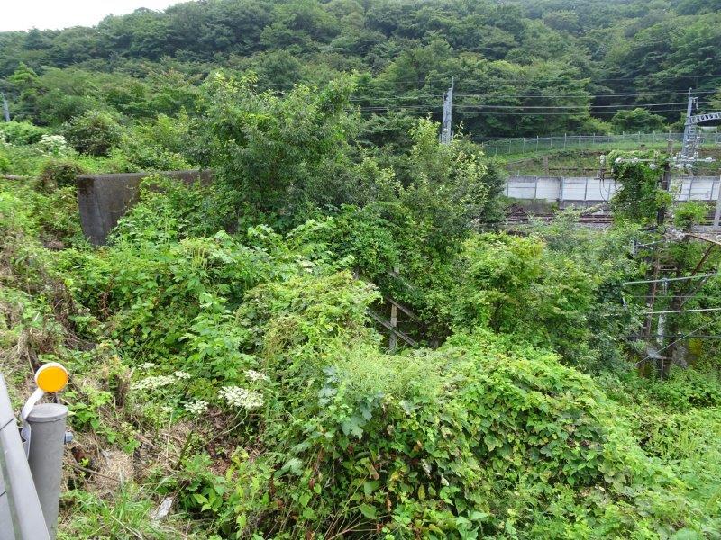 f:id:fujisyuu01:20210228142659j:plain