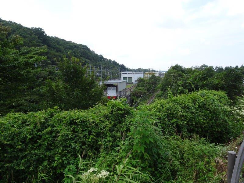 f:id:fujisyuu01:20210228142705j:plain
