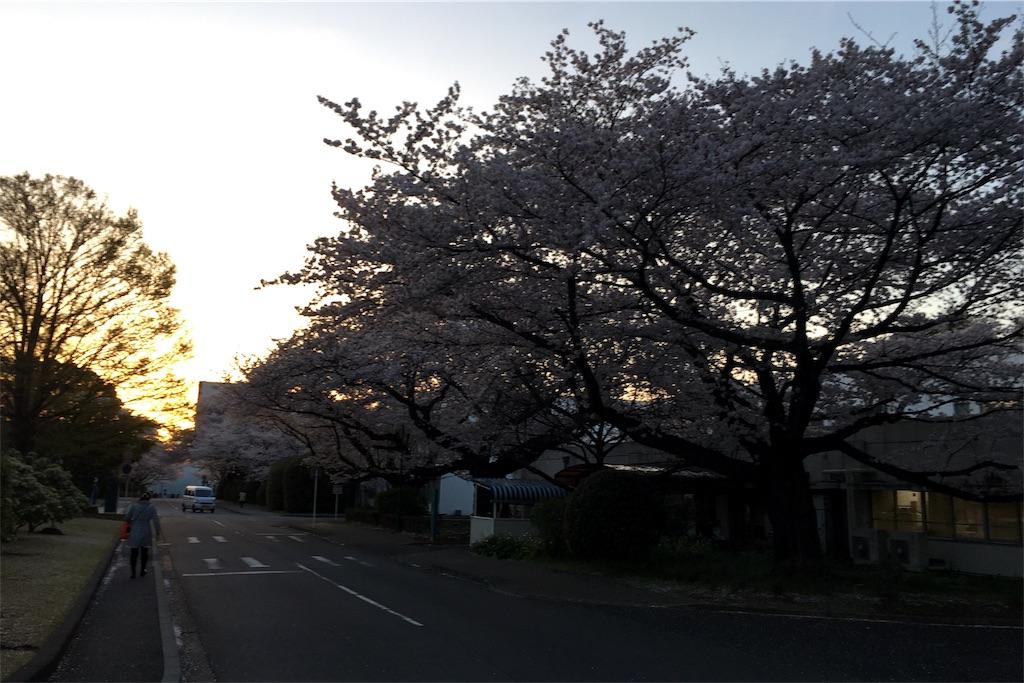 f:id:fujita244:20170408105138j:image