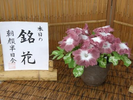f:id:fujitam3:20080805213911j:image