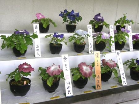 f:id:fujitam3:20110804215010j:image