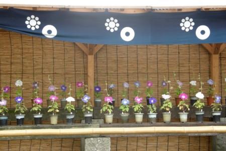 f:id:fujitam3:20110807142545j:image