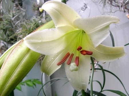f:id:fujitam3:20110821135903j:image