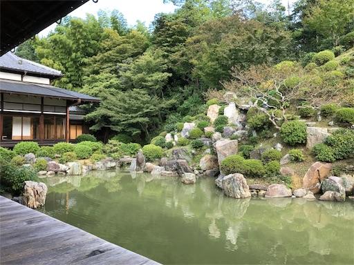 f:id:fujiwara_marika:20171019162125j:image