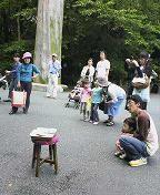 f:id:fujiwarakominka:20080525104800j:image