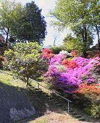 f:id:fujiwarakominka:20090419094000j:image