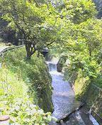 f:id:fujiwarakominka:20090428113600j:image