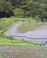 f:id:fujiwarakominka:20090704113800j:image:medium