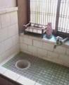 f:id:fujiwarakominka:20090823102800j:image:medium