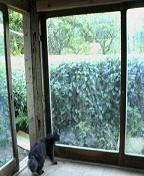 f:id:fujiwarakominka:20090920064800j:image