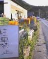 f:id:fujiwarakominka:20091010165700j:image:medium