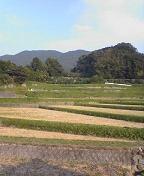 f:id:fujiwarakominka:20091028160700j:image