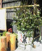f:id:fujiwarakominka:20100220112800j:image