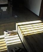 f:id:fujiwarakominka:20100311085100j:image