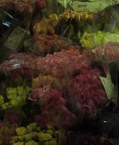 f:id:fujiwarakominka:20100318174500j:image