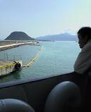 f:id:fujiwarakominka:20100328102000j:image