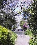 f:id:fujiwarakominka:20100329125900j:image