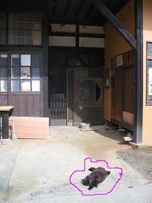 f:id:fujiwarakominka:20100507083556j:image