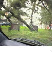 f:id:fujiwarakominka:20100730165900j:image
