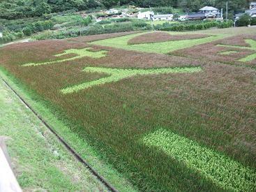 f:id:fujiwarakominka:20100912063826j:image