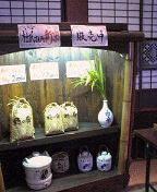 f:id:fujiwarakominka:20100919135900j:image