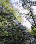 f:id:fujiwarakominka:20100926103700j:image