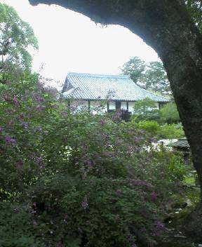 f:id:fujiwarakominka:20100926161900j:image