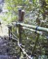 f:id:fujiwarakominka:20101017154200j:image:medium