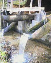 f:id:fujiwarakominka:20101119145300j:image