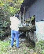 f:id:fujiwarakominka:20101119145500j:image