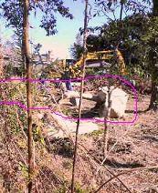 f:id:fujiwarakominka:20101205121900j:image