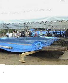 f:id:fujiwarakominka:20110211141900j:image