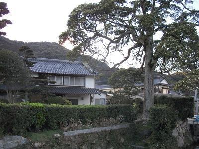 f:id:fujiwarakominka:20110302174713j:image