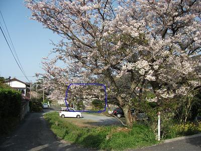 f:id:fujiwarakominka:20110409165030j:image