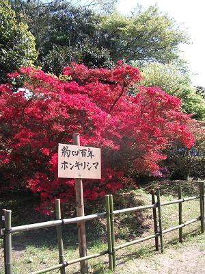 f:id:fujiwarakominka:20110429143835j:image